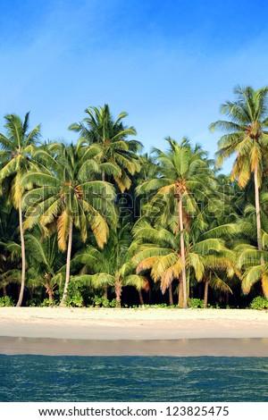 Coconut palms on idyllic white sand beach on tropical paradise island - stock photo