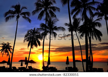 Coconut palms on sand beach in tropic on sunset. Siam Bay.Thailand - stock photo