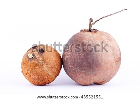coconut shell and  brown ripe coconut for coconut milk or oil coconut  on white background healthy fruit food isolated  - stock photo