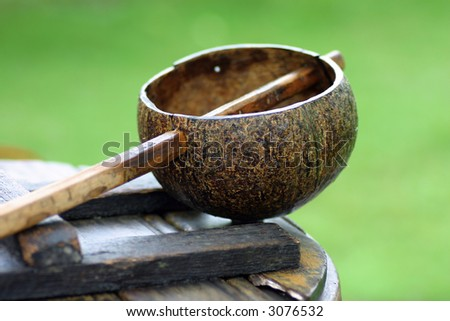 Coconut shell dipper with water jar with green background