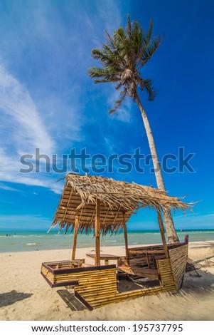 Coconut Sunshine Palms, sea beach - stock photo
