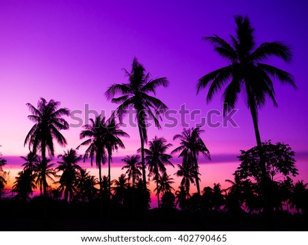 coconut tree in thailand beautiful  sunset background.,made with Vintage Tones,Warm tones , with Effects filters. - stock photo
