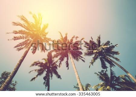Coconut tree on blue sky. Vintage filter. - stock photo