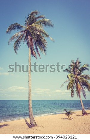 Coconut tree on the beautiful tropical beach and sea - Vintage Filter