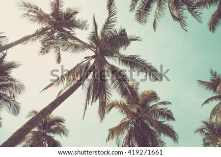coconut tree, vintage tone - stock photo