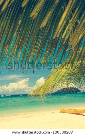 coconut tree with beach in borneo, manukan island , retro effect selected focus - stock photo
