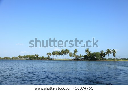 Coconut trees and backwaters of Kerala, India.