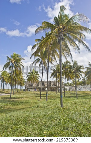 Coconut trees and old building at Porto de Galinhas beach - Pernambuco - Brazil - stock photo