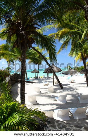 Coconut trees at a beach resort Mauritius