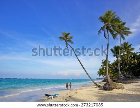 coconut trees beside the exotic Caribbean beach - stock photo
