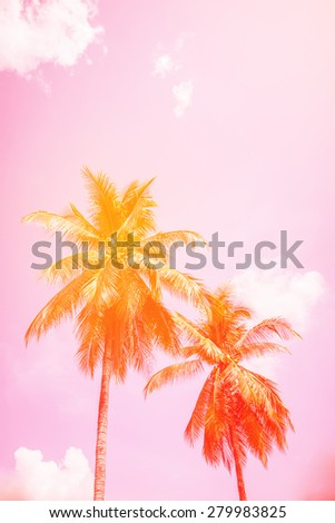 coconut trees on the beach with filter colored. - stock photo