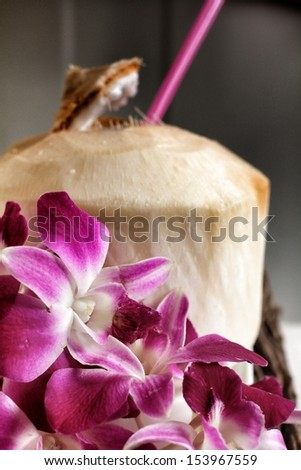 Coconut water drink and pink orchid - stock photo