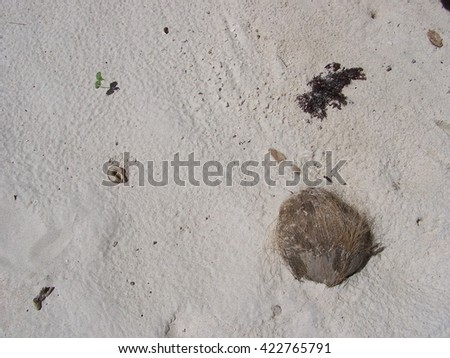 Coconut white sands  background - stock photo