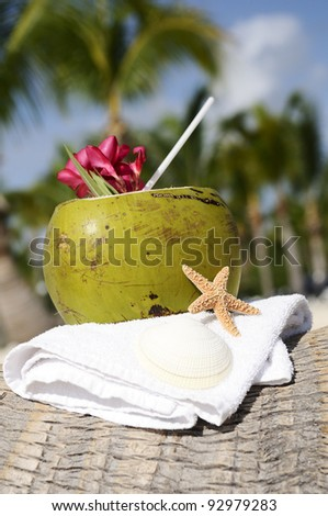 Coconut with drinking straw on a palm tree at the sea - stock photo