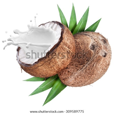 Coconut with milk splash inside. File contains clipping paths. - stock photo