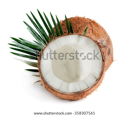Coconut with palm leaves isolated on white background - stock photo
