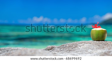 Coconut with tropical flower on exotic coast - stock photo