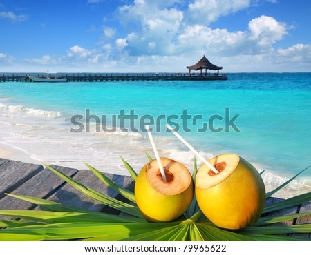 coconuts cocktail on palm tree leaf in Caribbean tropical sea [Photo Illustration] - stock photo