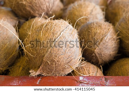 Coconuts in tropical produce market - stock photo
