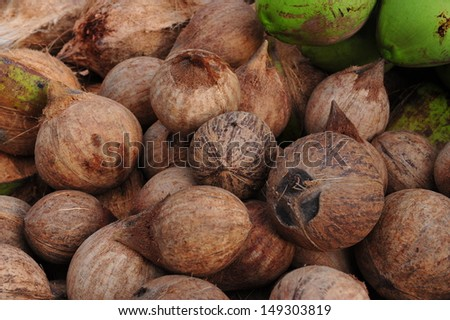 Coconuts on market