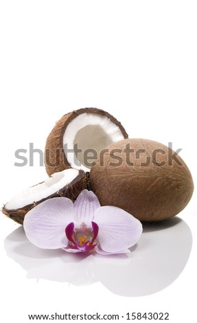 Coconuts, orchid isolated on white - stock photo