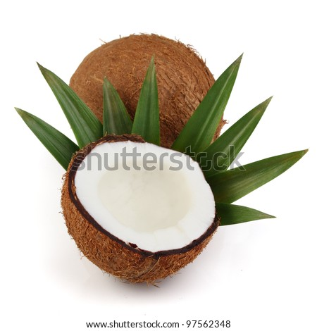 Cocos with leaves