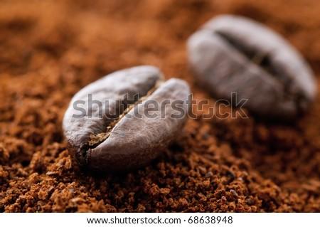Coffee Bean - stock photo