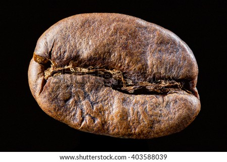Coffee bean isolated on black background. Big size close up photo of single bean - stock photo