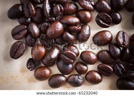 Coffee bean on grunge paper background
