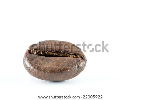 Coffee bean on white background. - stock photo