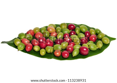 coffee beans and leaf on white background - stock photo