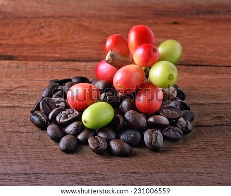 coffee beans and ripe coffee - stock photo