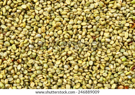 Coffee beans dried in the sun, Coffee beans raked out for drying prior to roasting - stock photo