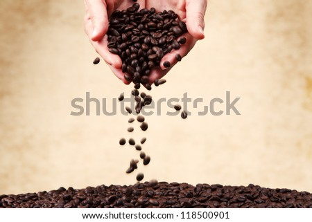 Coffee beans in female hands. - stock photo