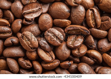 coffee beans isolated on white background. Three coffee beans - stock photo