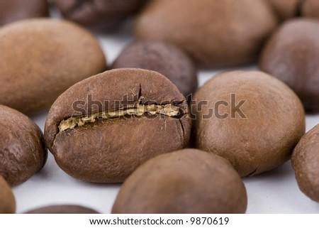 coffee beans macro on the white background - stock photo