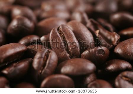 Coffee beans macro shot - stock photo