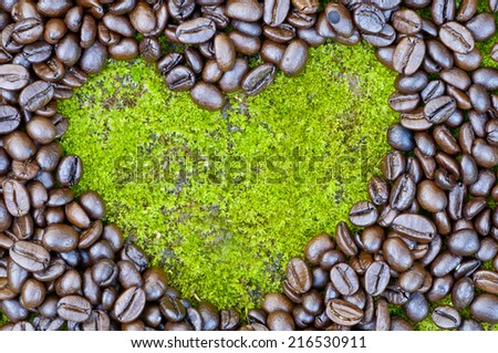 Coffee beans on Moss surface - stock photo