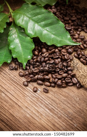 Coffee beans over wood background, Macro close-up for design work - stock photo