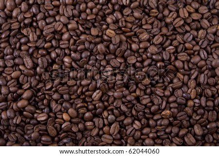 Coffee beans spread all over the floor. - stock photo