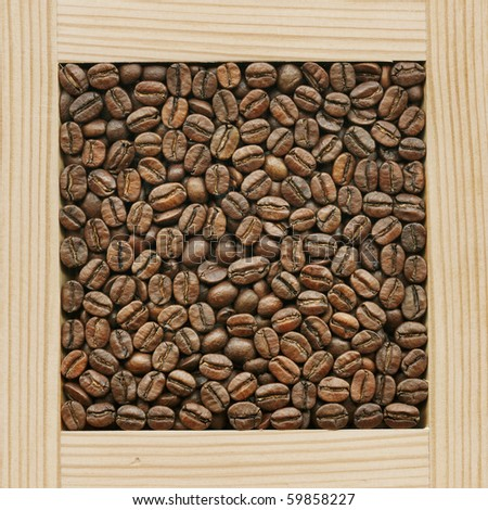 Coffee, collection of loose products - stock photo