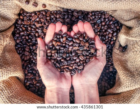 Coffee concept. Hands in sac with roasted coffee beans.   - stock photo