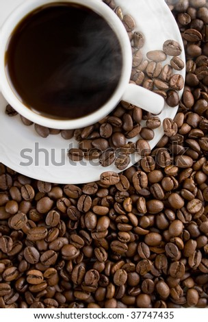 Coffee cup on the beans. Close up