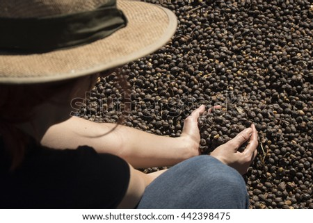 Coffee - Farmer holding  dried coffee bean, roasted coffee bean in the background, selective focus - stock photo