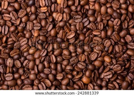 Coffee grains - stock photo
