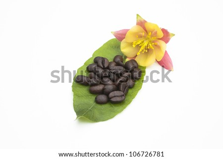 coffee on leaf by flower - stock photo