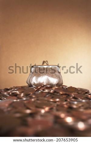 Coin Purse - stock photo