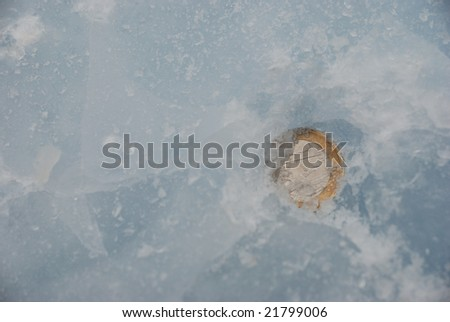 Coin under ice - stock photo