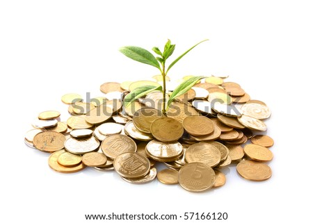Coins and green plant isolated on white (Ukraininan coins)