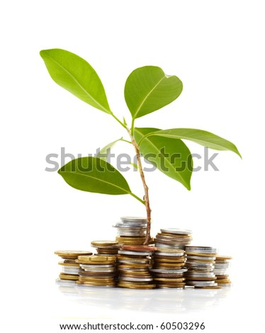 Coins sprout - stock photo